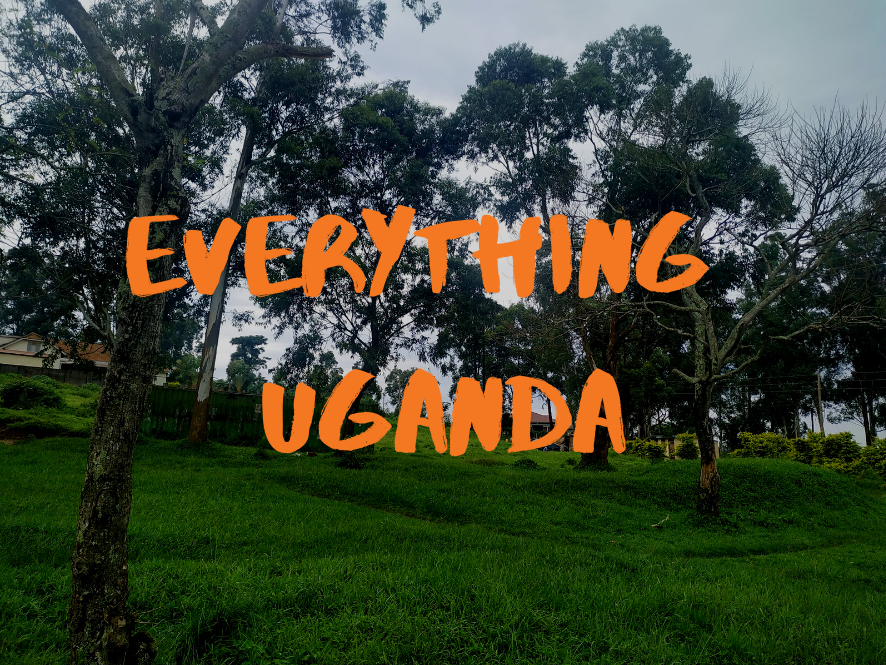 Everything Uganda: Trees of Masaka Part 3